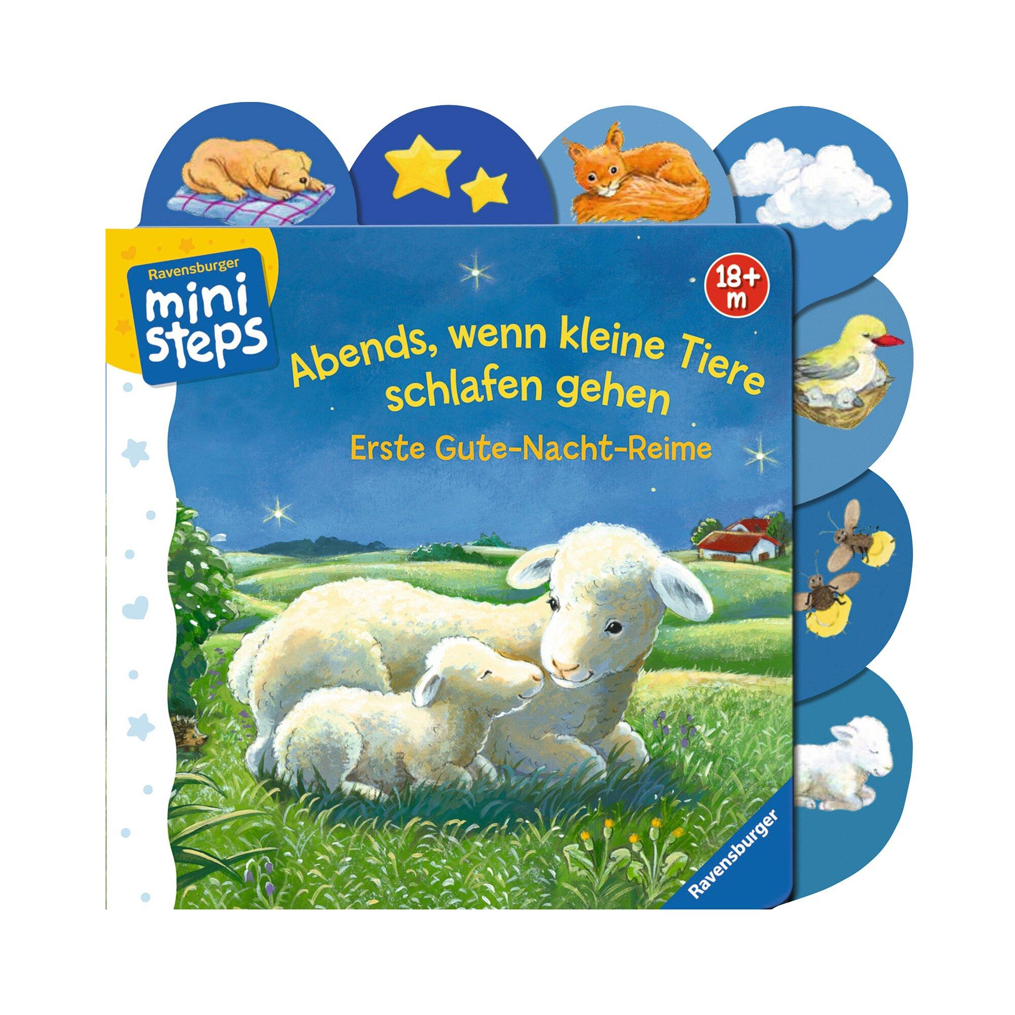 Ministeps Pappbilderbuch Abends, wenn kleine Tiere schlafen gehen
