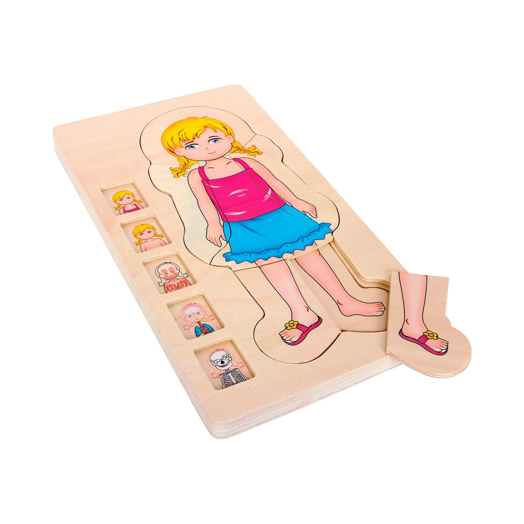 small-foot-puzzle-anatomie-madchen