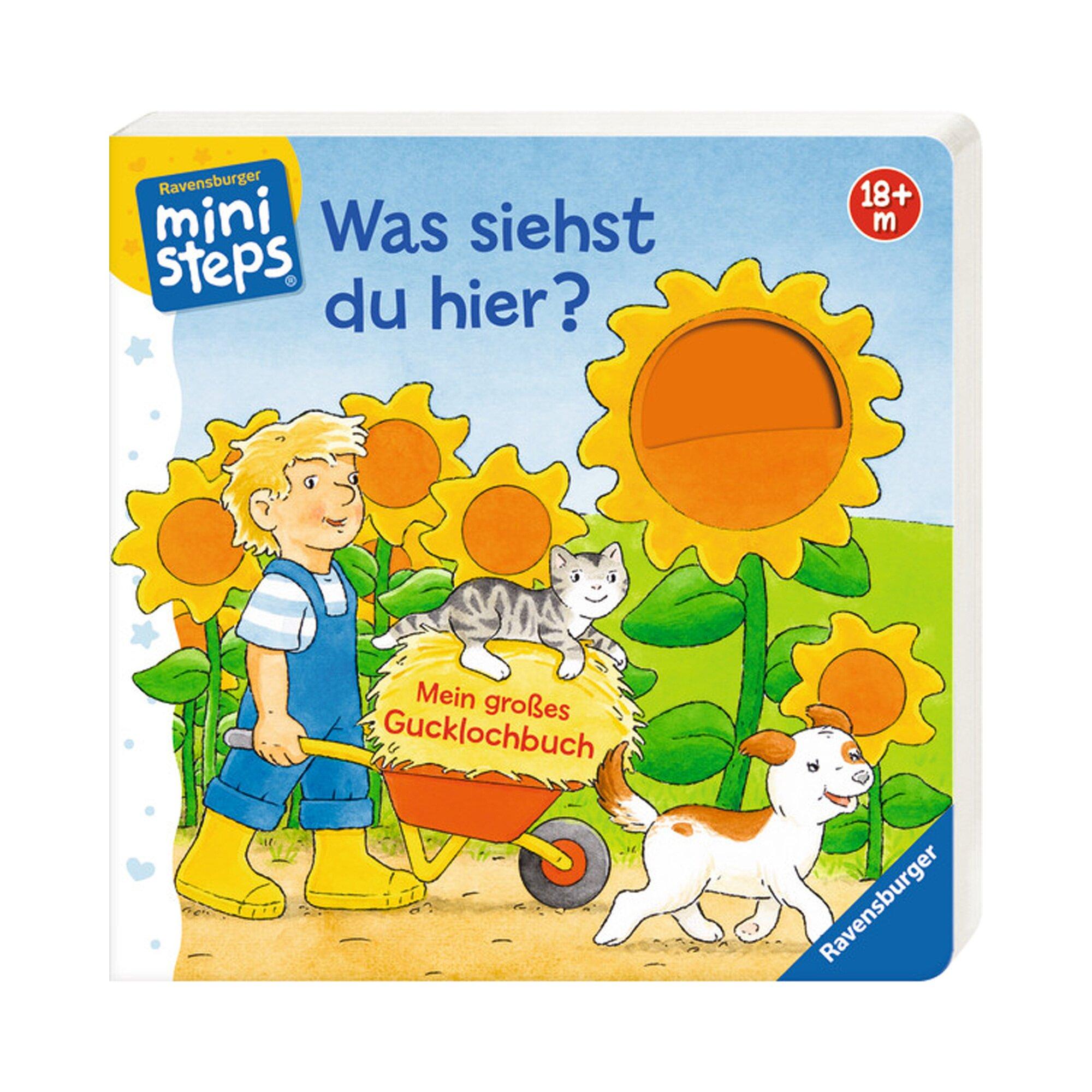 Ministeps Pappbilderbuch Was siehst du hier? Mein großes Gucklochbuch