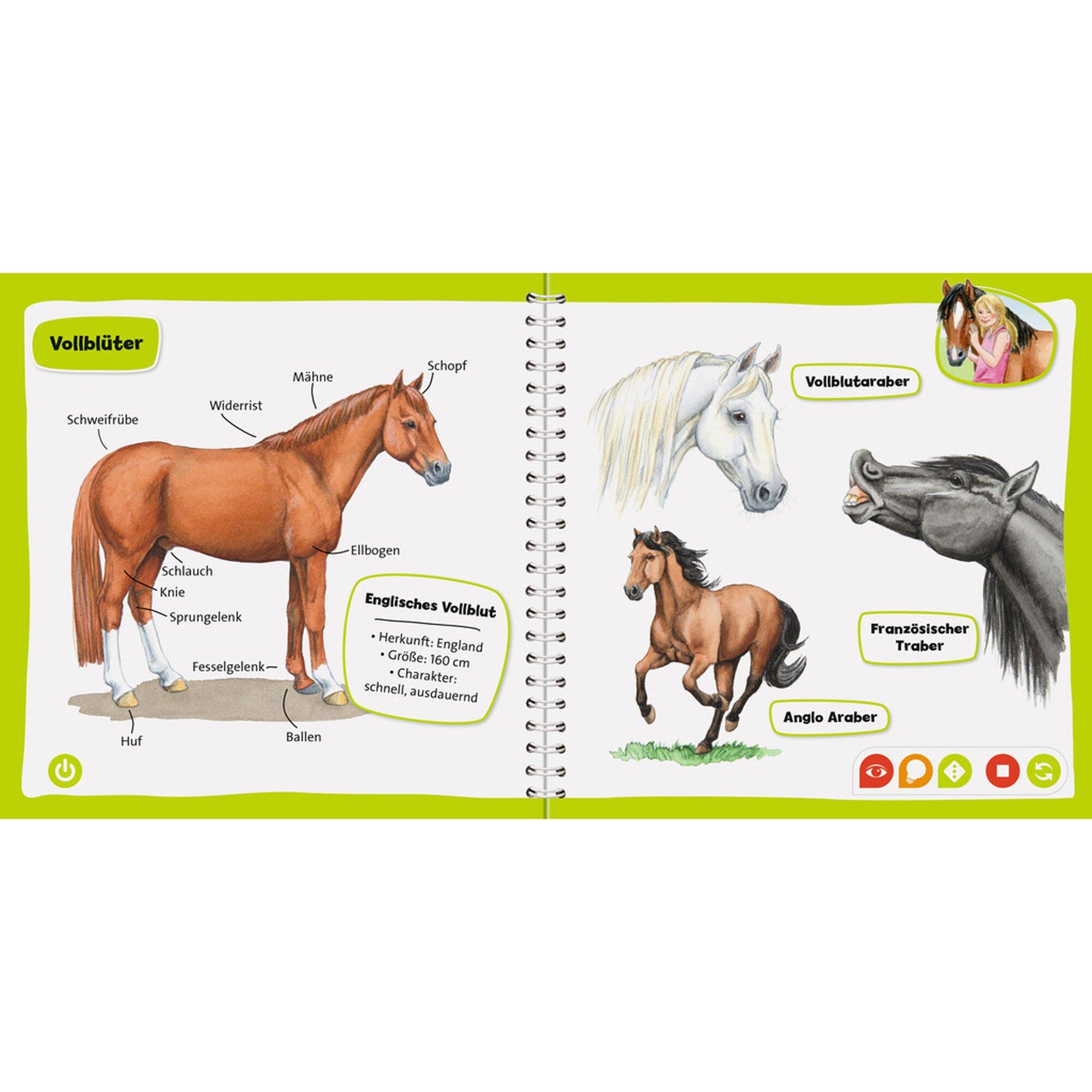 tiptoi-pocket-wissen-pferde-und-ponys