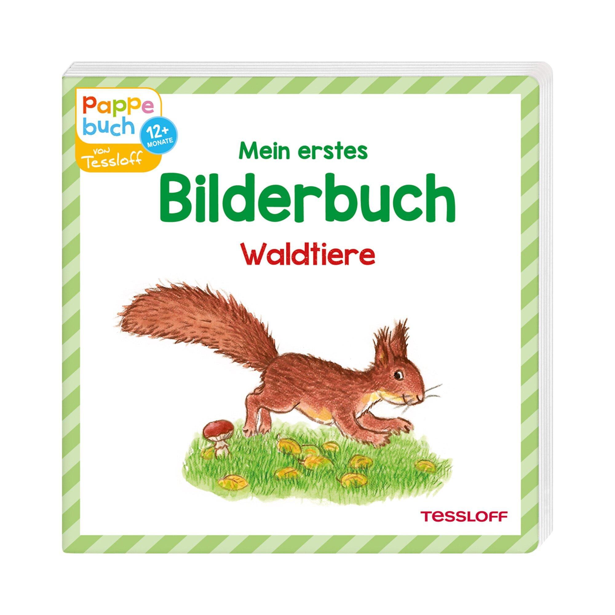 Tessloff Verlag Pappbilderbuch - Mein erstes Bilderbuch Waldtiere