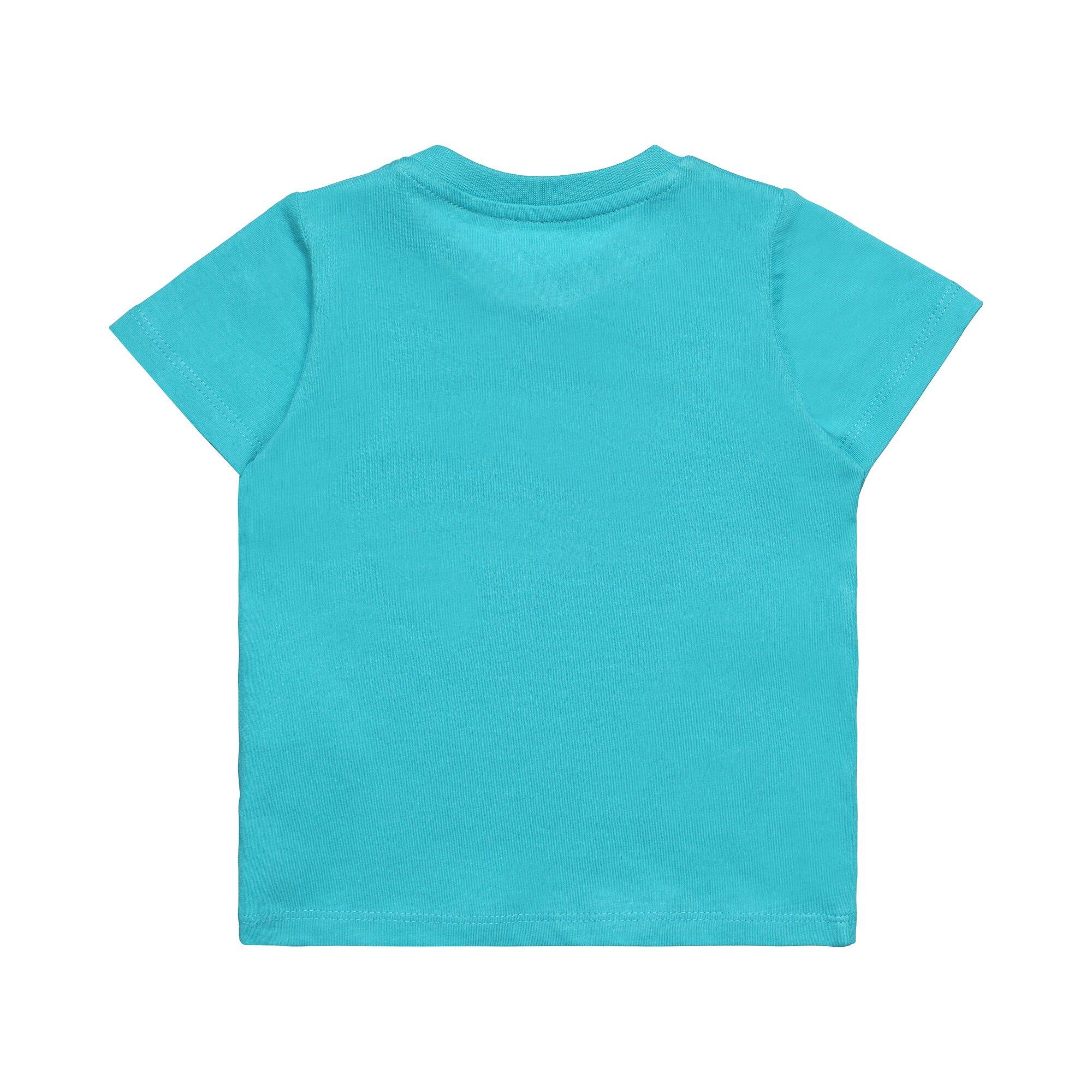 esprit-t-shirt-schildkrote