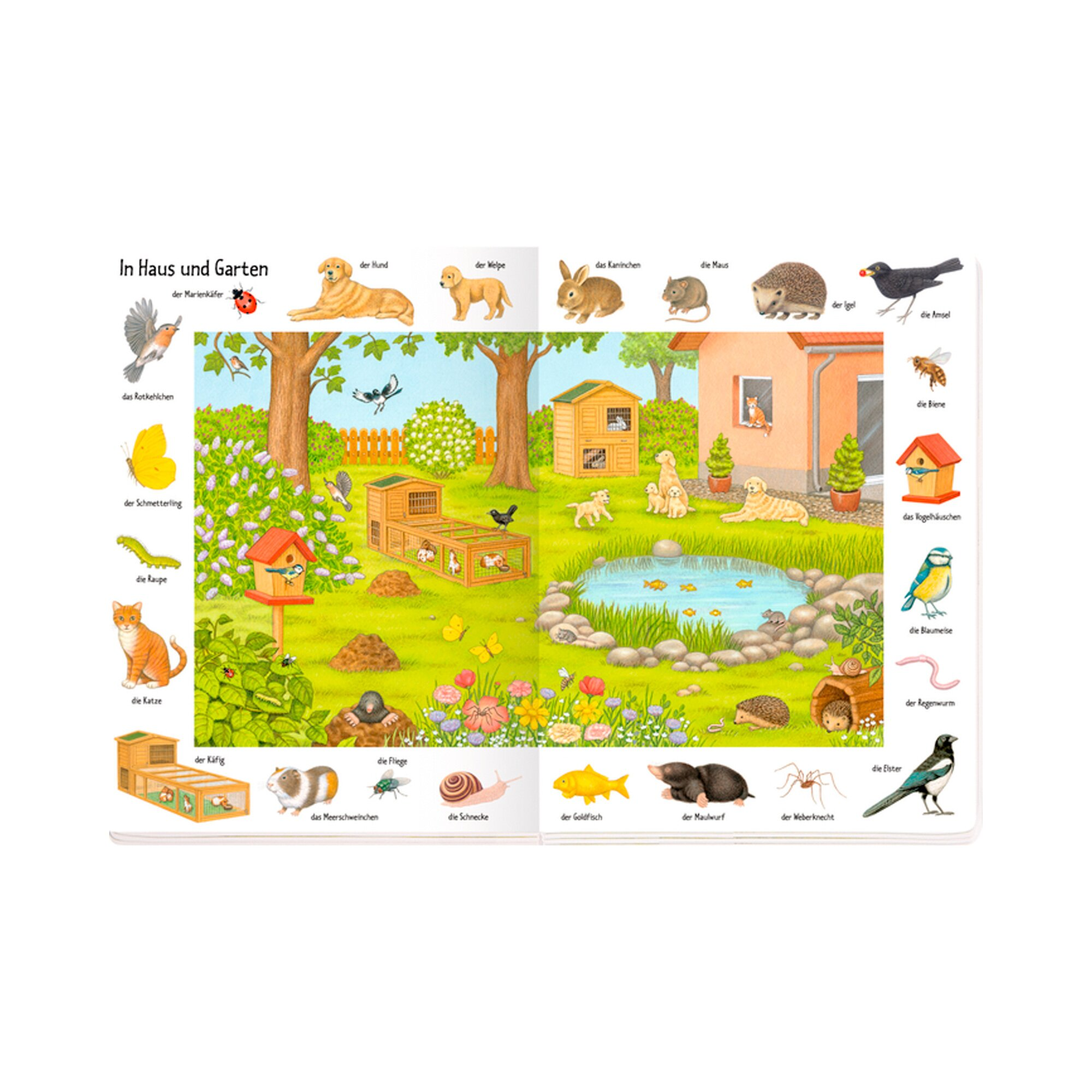 coppenrath-die-spiegelburg-pappbilderbuch-bilder-suchen-worter-finden-so-vielen-tiere