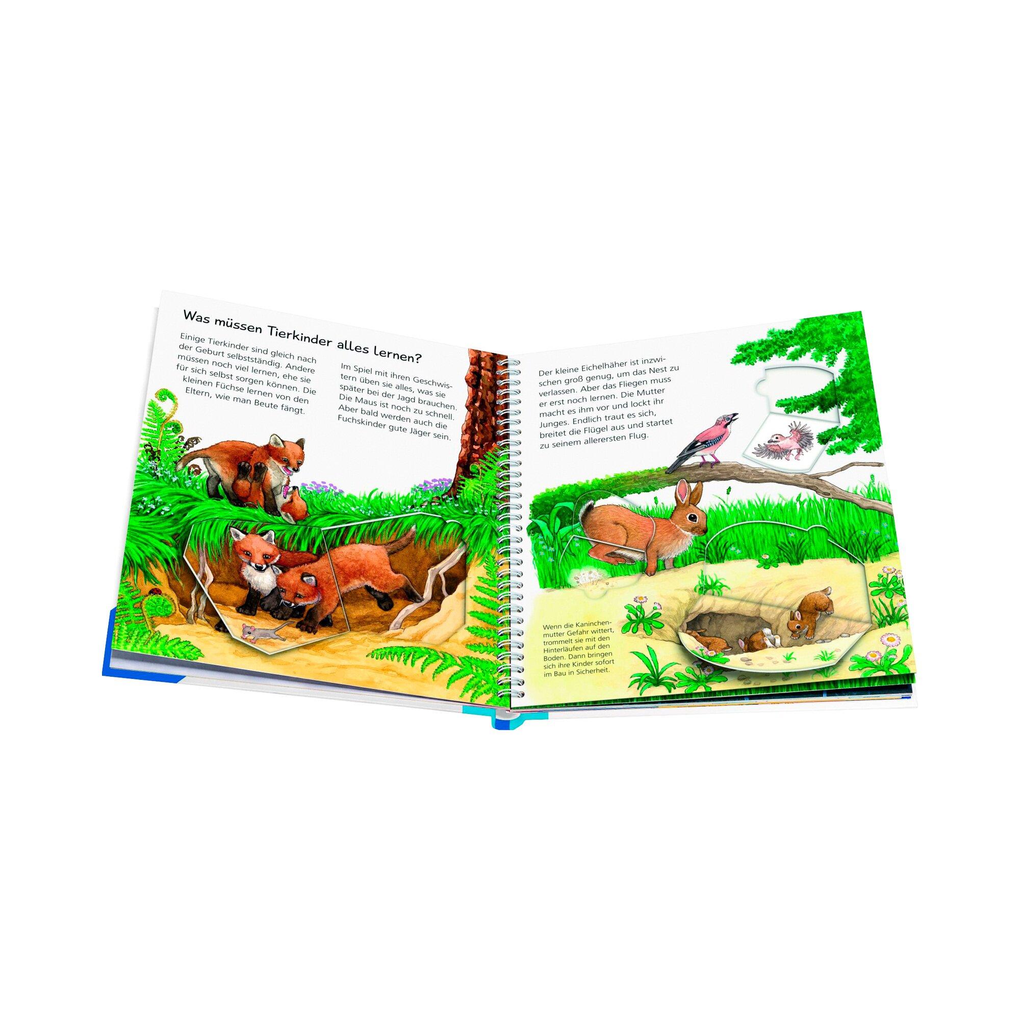wiesoweshalbwarum-sachbuch-unsere-tierkinder