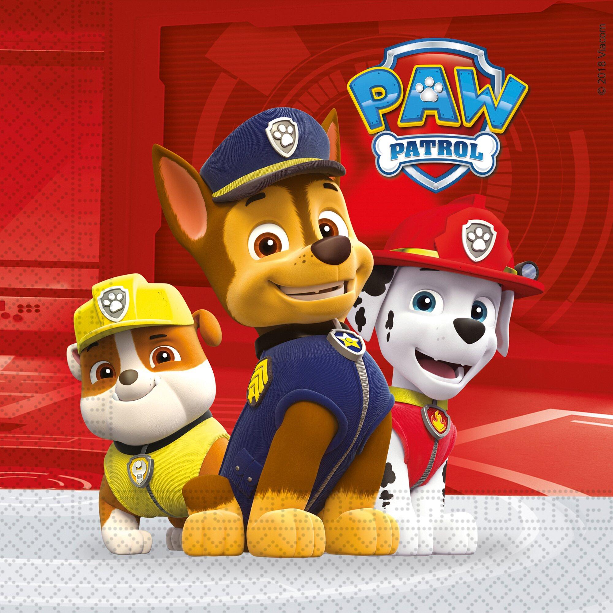 paw-patrol-42-tlg-partyset-paw-patrol