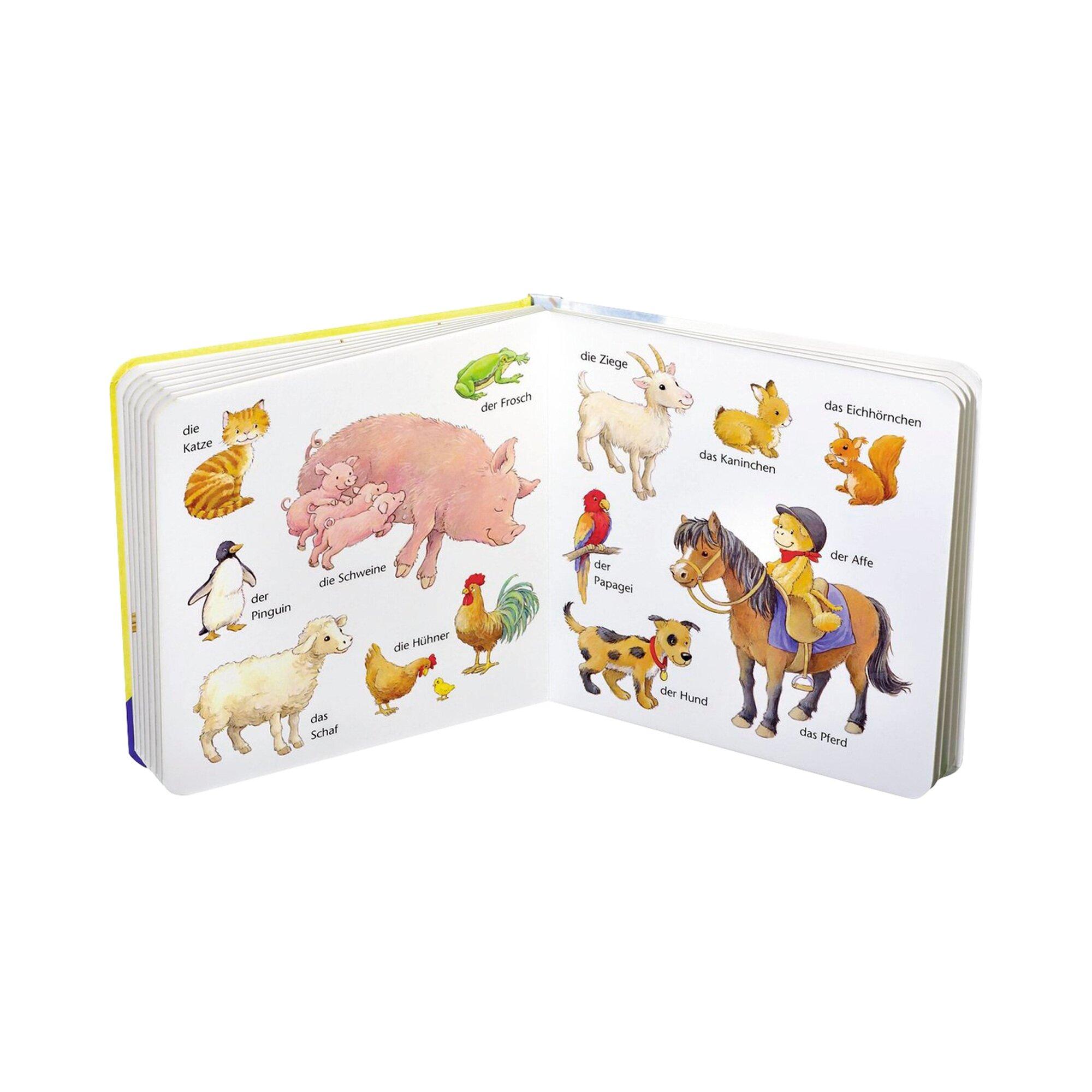 ministeps-pappbilderbuch-mein-erstes-worterbuch