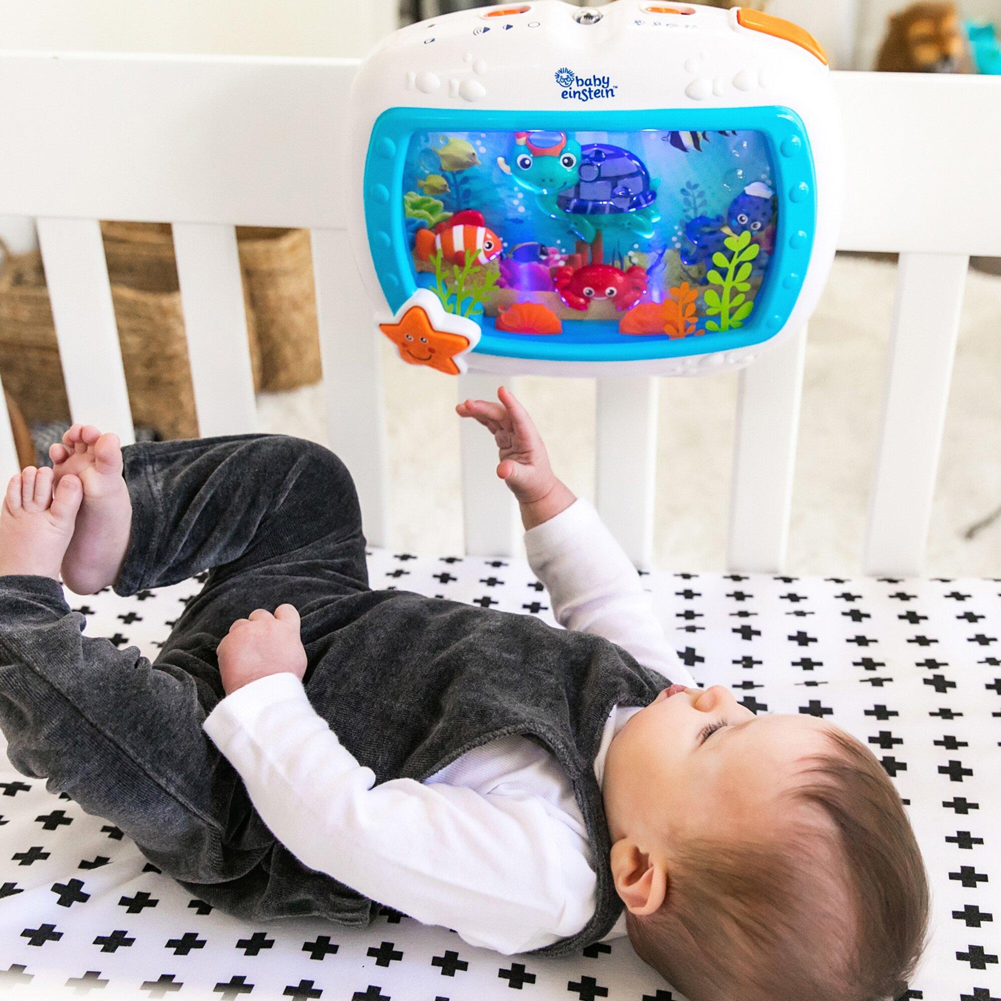 baby-einstein-schlummerspielzeug-sea-dreams-soother-