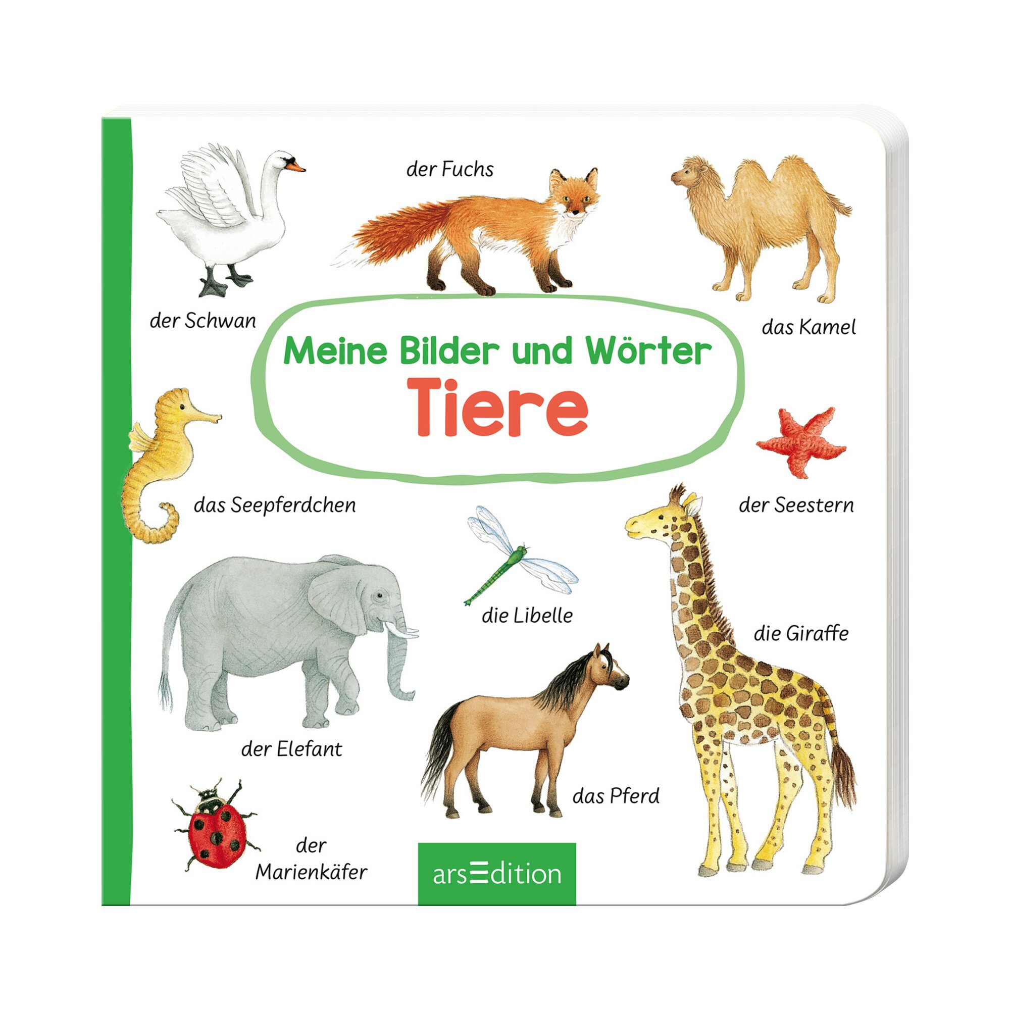 Arsedition Pappbilderbuch Meine Bilder und Wörter - Tiere