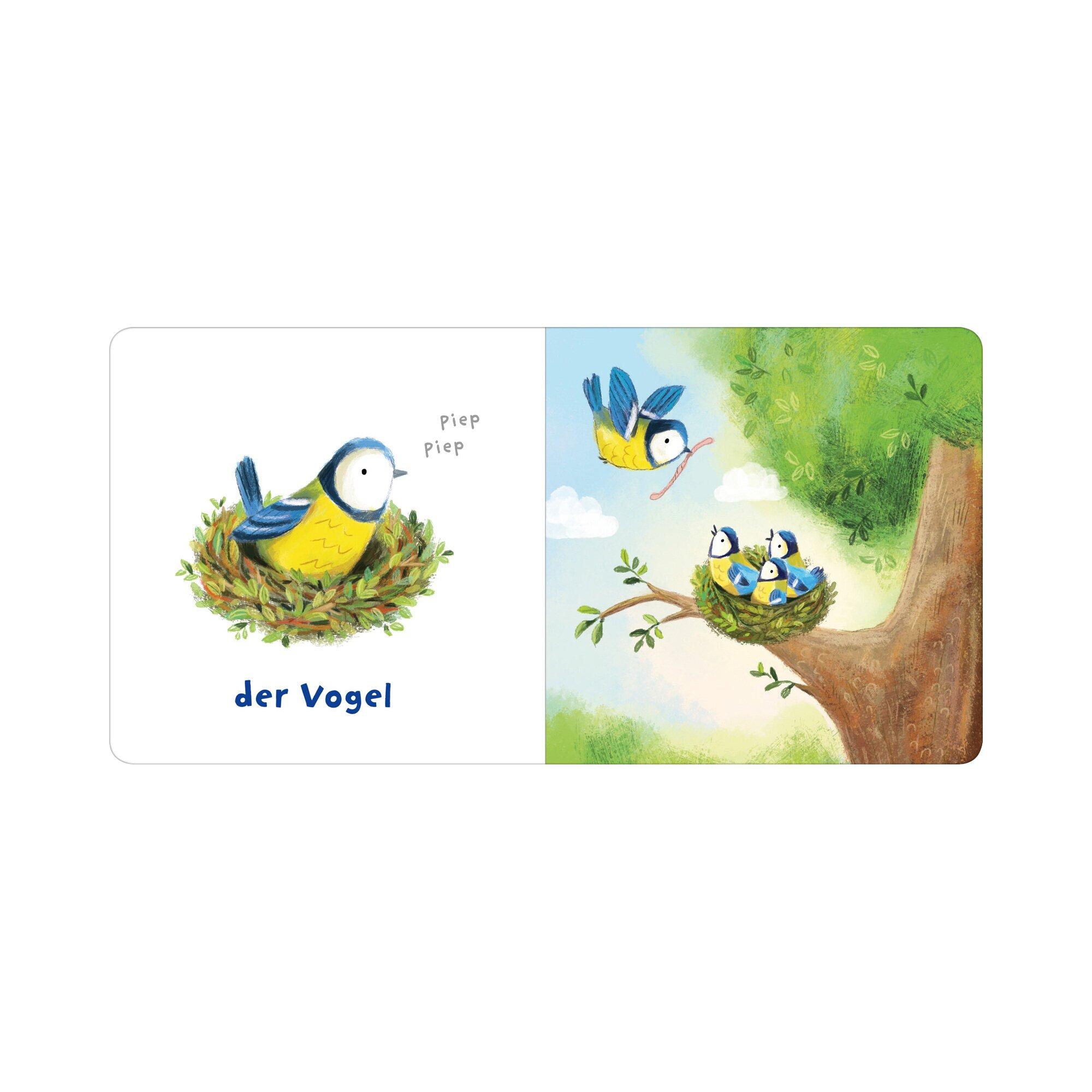 arsedition-pappbilderbuch-rassel-mal-kleiner-bar
