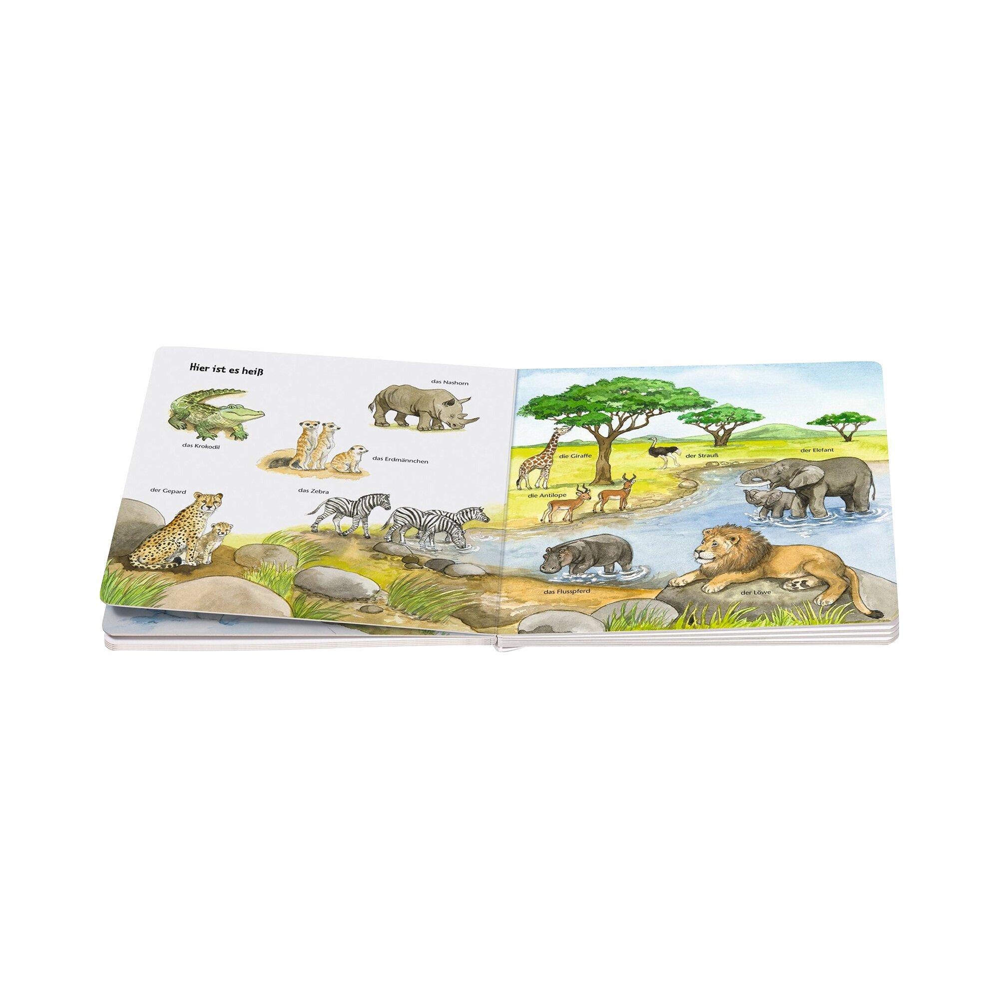 ministeps-sachbuch-mein-allererstes-tierlexikon