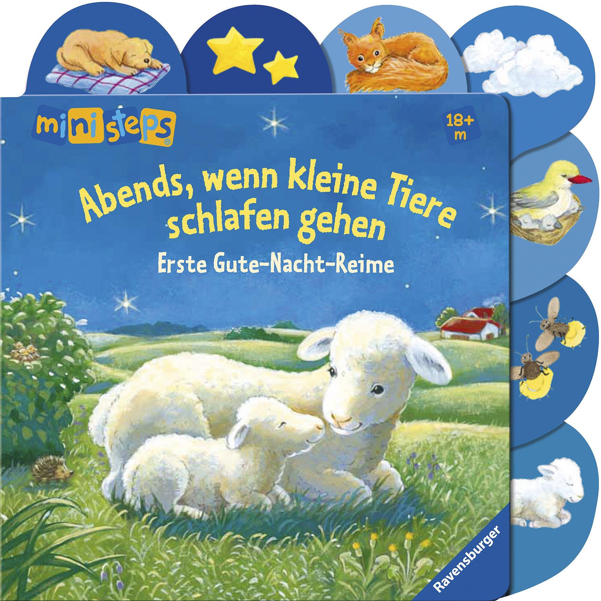Ministeps Pappbilderbuch-Abends, wenn kleine Tiere schlafen gehen