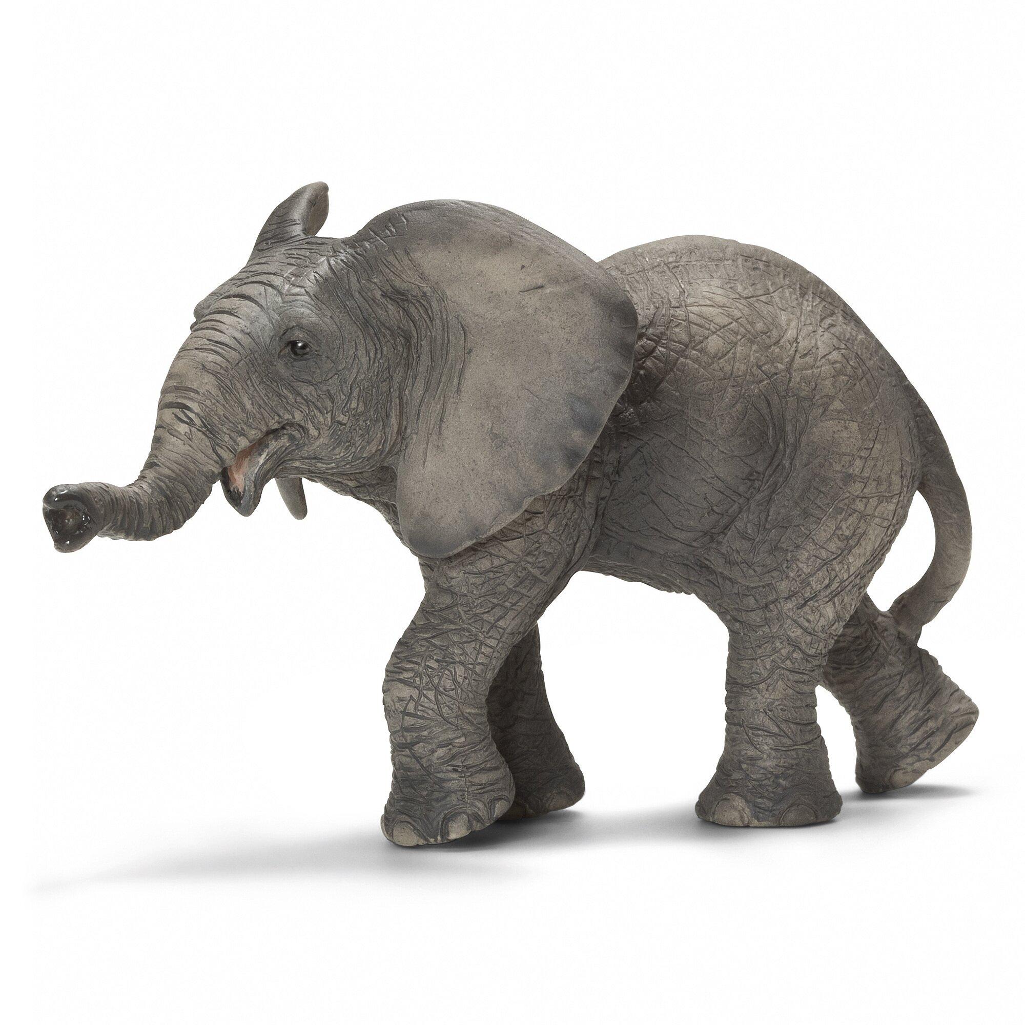 afrikaanse-babyolifant