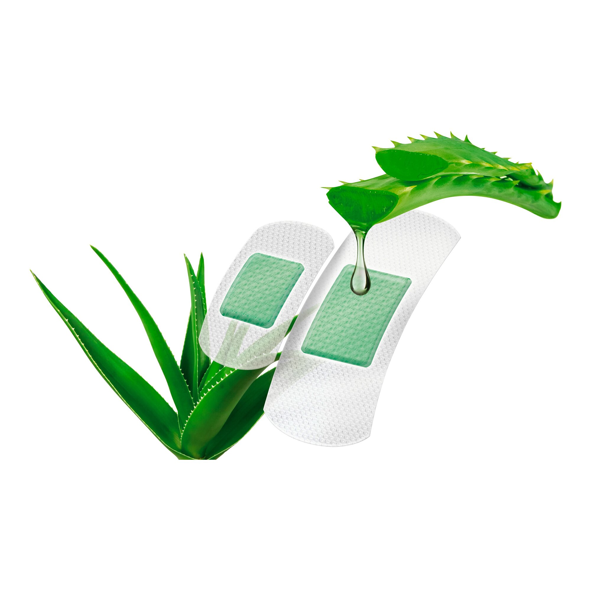 Image of 10 Pflaster mit Aloe Vera