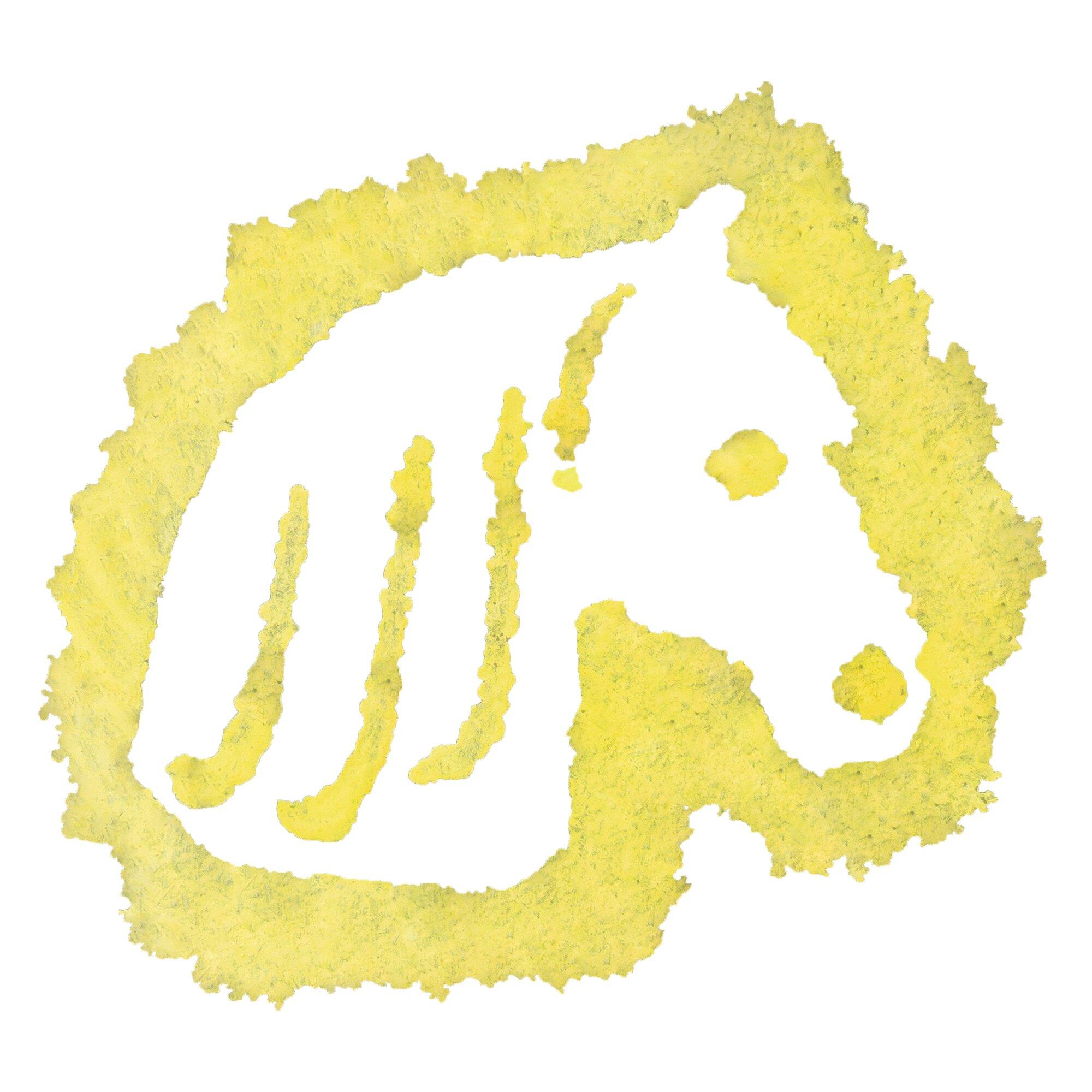 ravensburger-pferd-grundtechnik-malen, 9.99 EUR @ babywalz-de