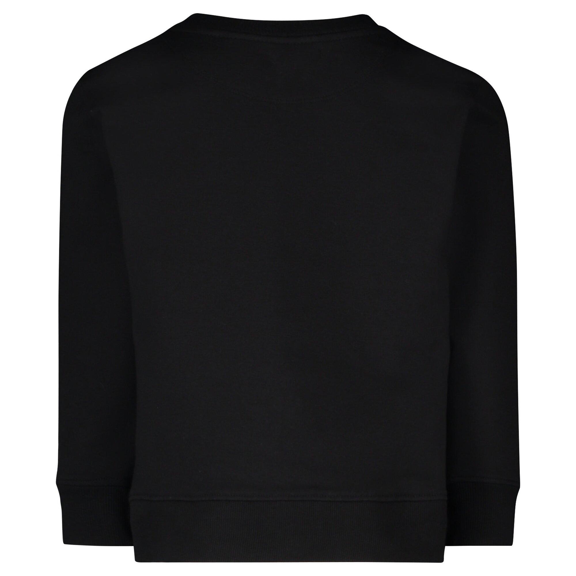 sweater-williamsburg, 44.99 EUR @ babywalz-de