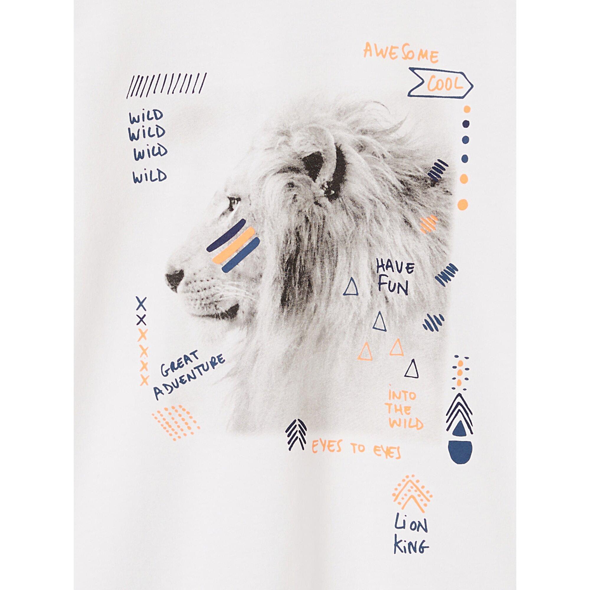 vertbaudet-jungen-t-shirt-mit-fotoprint