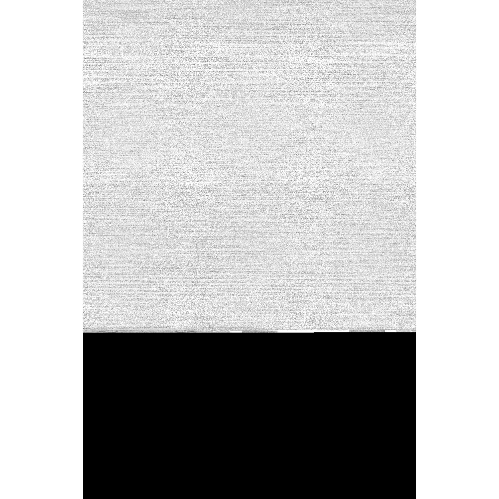 bellybutton-umstandsshirt-junia