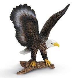 L'aigle pygargue