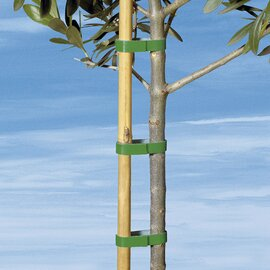 Adh sif pour plantes commander en ligne for Plantes a commander