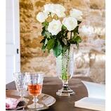 Vase Curone