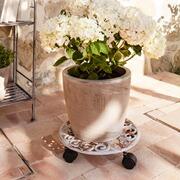 Blumenroller Serio aus Gusseisen