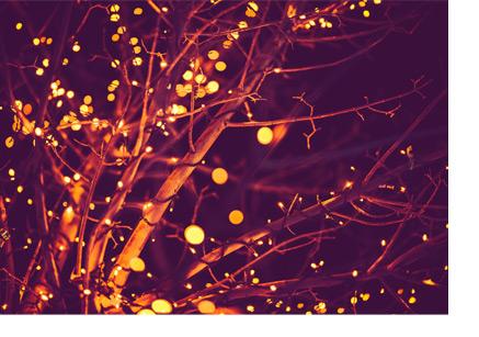 Weihnachtsdeko Für Aussen Günstig.Welche Weihnachtsdeko Für Den Outdoor Bereich Benutzen Die