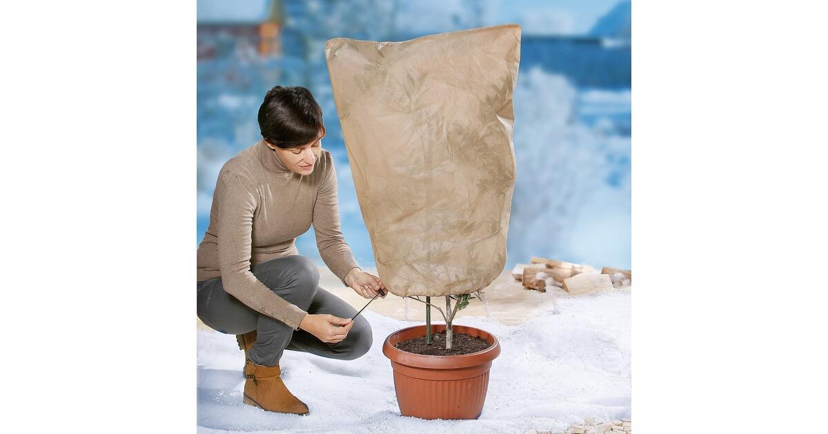 pflanzenschutz online kaufen die moderne hausfrau. Black Bedroom Furniture Sets. Home Design Ideas