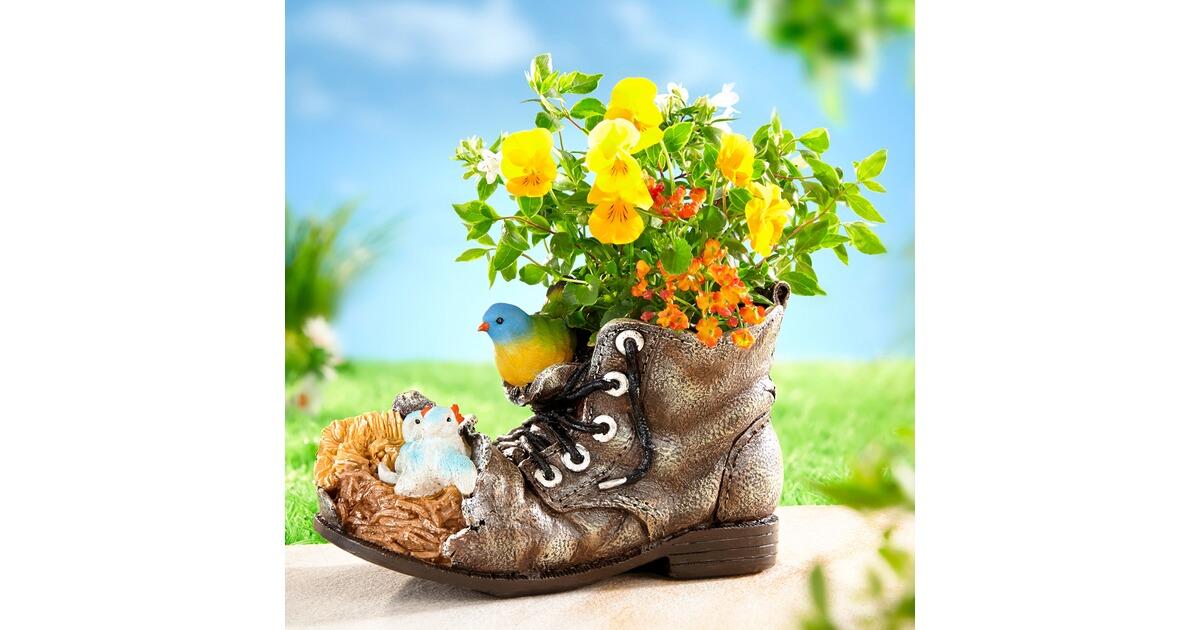 Chaussure pour plantes oiseaux commander en ligne maison confort - Code avantage plantes et jardins ...