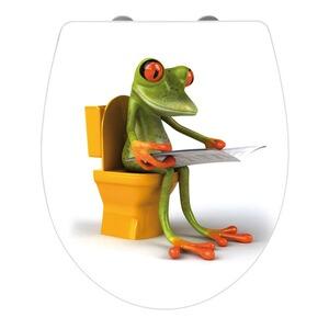 wenko premium wc sitz hochglanz acryl frog news absenkautomatik fix clip hygiene