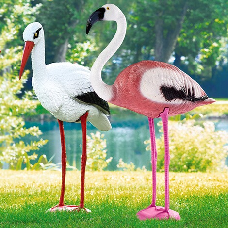 Vogel  Flamingo 2