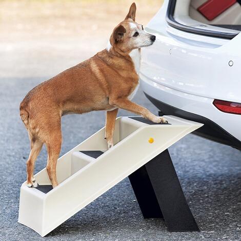 tri hunde treppe online kaufen die moderne hausfrau. Black Bedroom Furniture Sets. Home Design Ideas