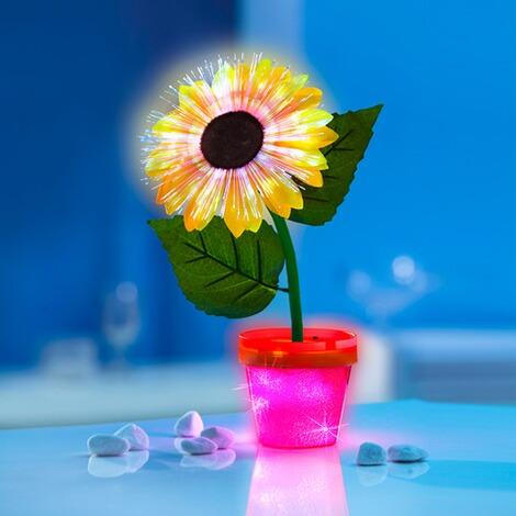 LED-Sonnenblume online kaufen | Die moderne Hausfrau