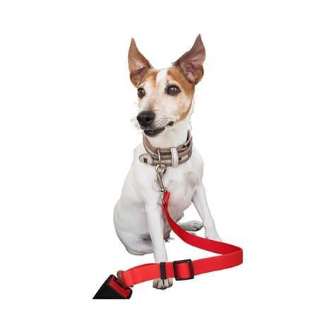 ceinture de s curit pour chien commander en ligne. Black Bedroom Furniture Sets. Home Design Ideas