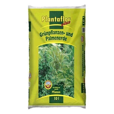 Moderne Grünpflanzen plantaflor grünpflanzen palmen erde 10 liter kaufen die