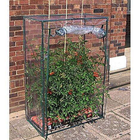 tomaten gew chshaus treibhaus tomatenhaus folienzelt fr hbeet online kaufen die moderne hausfrau. Black Bedroom Furniture Sets. Home Design Ideas