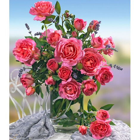 Parfum-Rose \