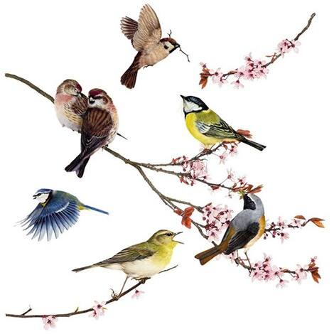 Fenster-Sticker Birds, 31 x 31 cm / 2 Bögen 3