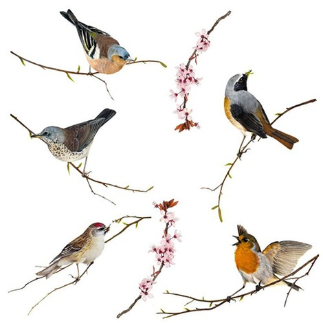 Fenster-Sticker Birds, 31 x 31 cm / 2 Bögen 1
