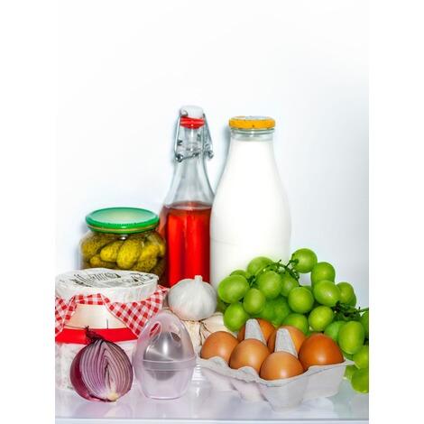 Zielonka zilofresh Kühlschrank-Ei schützt Aromen ohne neutralisiert Gerüche